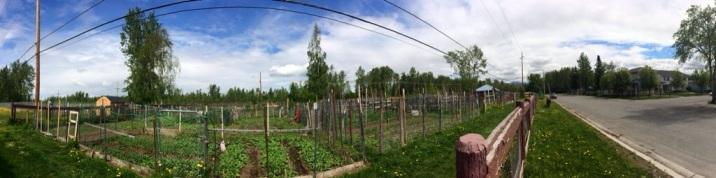 McPhee Gardens
