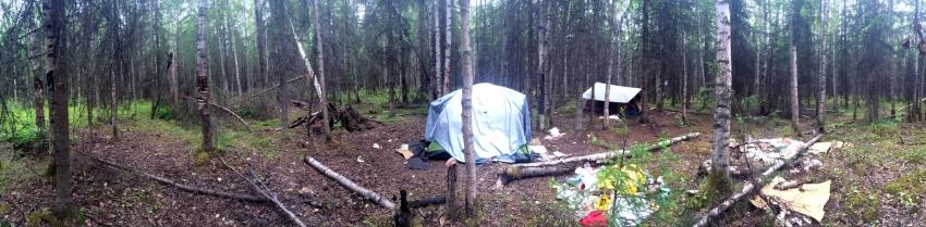 Davis Park Camp2