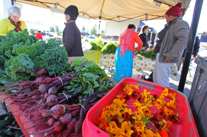 Soon, you'll be able to purchase produce from Fresh International Gardens at local farmers' markets.