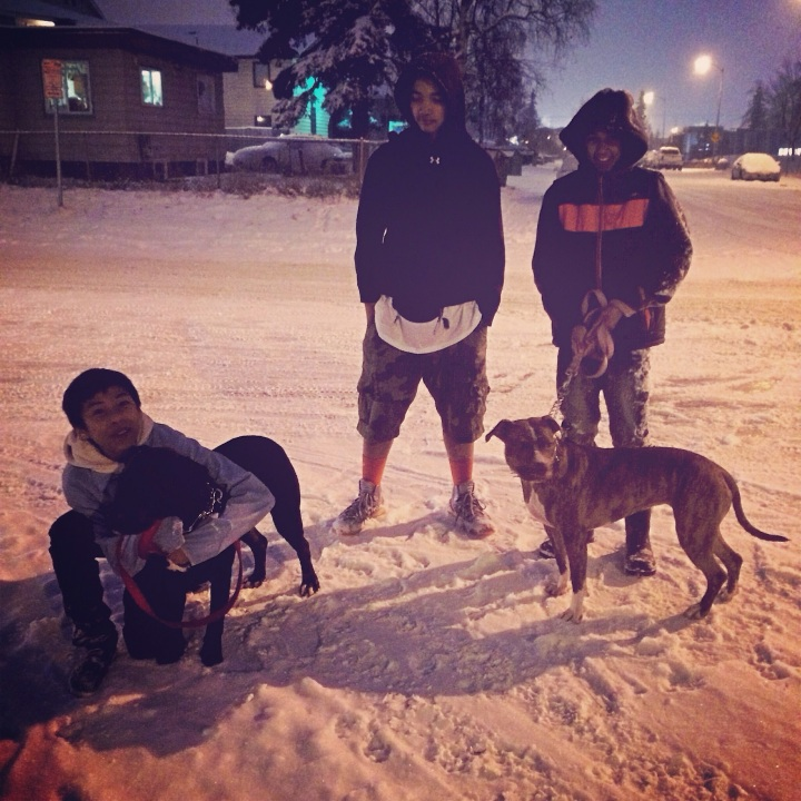 Say hi to Danny, Michael and Phillip (ages 13 & 12). They came out to walk their dogs the evening this photo was taken, but the roads are slippery and their dogs have lots of energy, so they're going home to look for sleds and makeshift harnesses. They're going to try this a different way.