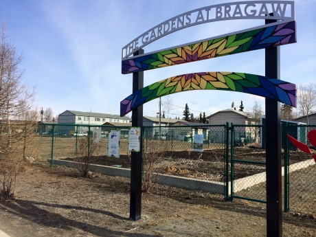 There are also three community gardens in Mountain View; including 44 plots at the Gardens at Bragaw